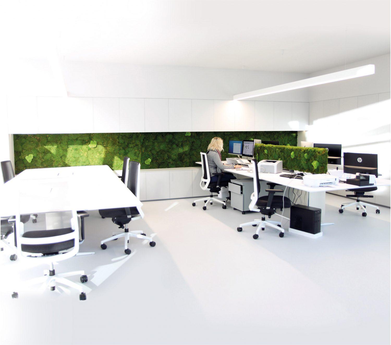 Decoratiuni sustenabile pentru birouri.