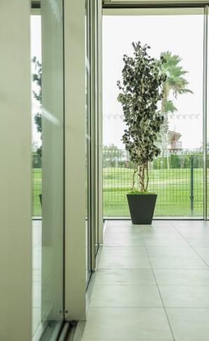 Decoratiuni sustenabile pentru birouri