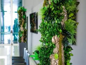 Decoratiuni sustenabile pentru hol, intrare in casa