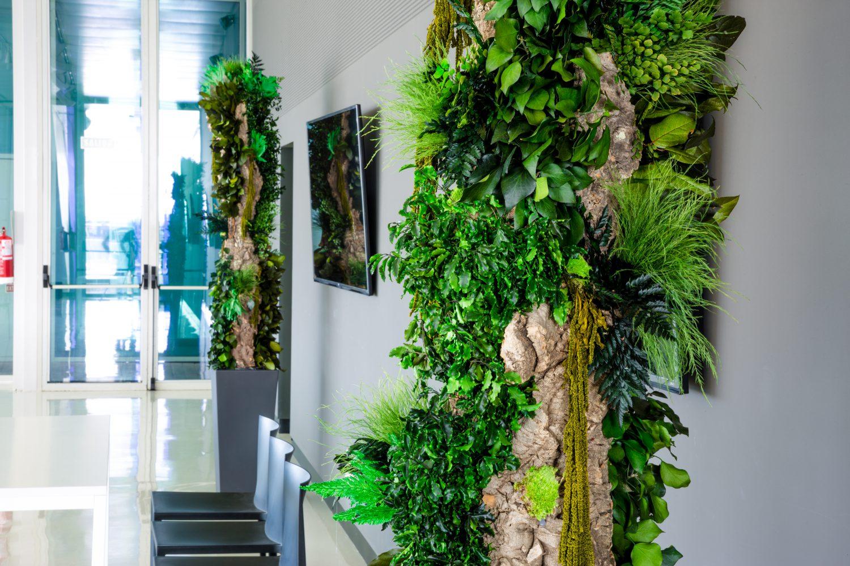 Decoratiuni sustenabile pentru hol, intrare in casa.