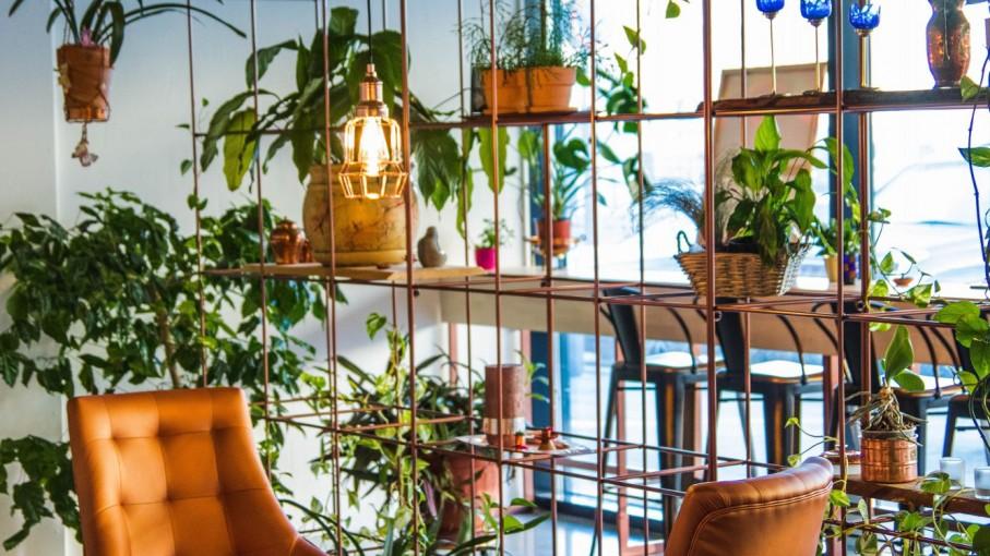 Spatiu verde in apartament