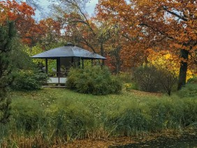 Cum se construieste un foisor / pavilion din lemn?